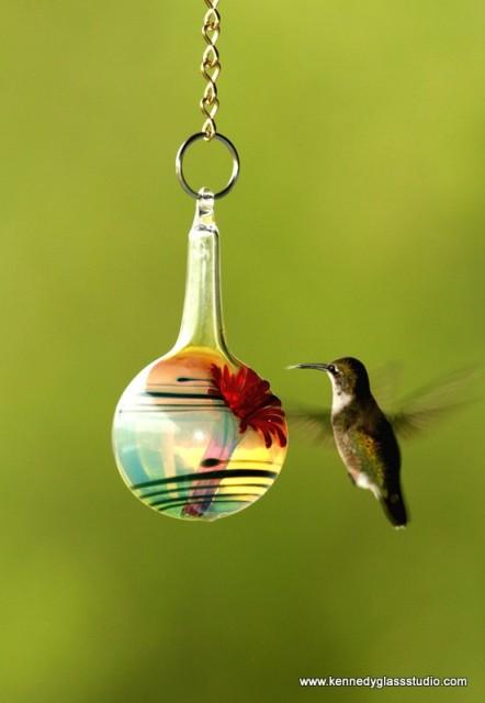 hummingbird-01