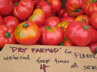 Dry-Farmed-Tomatoes-at-Santa-Barbara-Farmers-Market