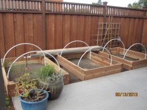 vegetable beds in the making