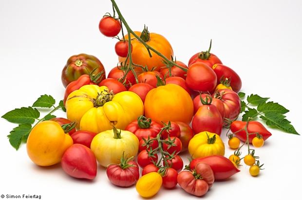 Tomato Assorted